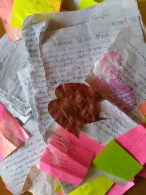 ზუგდიდელი მგზავრის წერილები